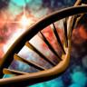 Geride Bıraktığımız Yılda Bilim Adına Dönüm Noktası Olabilecek 6 Olay