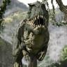 Bilim İnsanları, Dinozorların Nasıl Yaşadığını ve Neden Öldüğünü Anlamamızı Sağlayacak Bir Keşif Yaptı