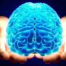 Tıpkı Bir İnsan Beyni Gibi Çalışan ve Hastalıkların Tedavisinde Yol Gösterebilecek Çip