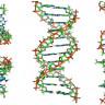 WÜ'den Bilim Dünyasını Sarsan Açıklama: Bazı Hücrelerimiz Ölümü Reddediyor!