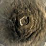 Mars'ta 2 Milyar Yıl Boyunca Hiç Durmadan Patlayan Bir Volkan Keşfedildi!