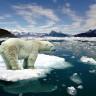 Buz Dağları, Korkutucu Hızlarda Erimeye Başladı!