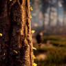 Horizon Zero Dawn'ın PS4 Pro'daki Görüntüleri Yayımlandı