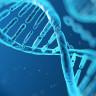 İlk Kez DNA'nın 3 Boyutlu Fotoğrafı Çekildi!