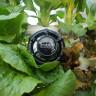 Toprağa Gerek Duymadan Bitki Yetiştirebilen Robot Geliştirildi!