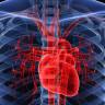 Dünyanın En Sağlıklı Kalplerinin Sahibi Topluluk ile Tanışın!