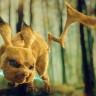 Gerçek Hayatta Görseniz  Besmele Çekeceğiniz 14 Gerçekçi Çizgi Film Karakteri!