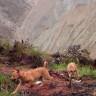 Harika Bir Haber:  Soyu Tükenmiş Dağ Köpeği Doğada Yeniden Görüntülendi!