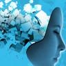 'Hafıza ve Anılar' Hakkında Bildiğimiz Her Şeyi Kökten Değiştiren Keşif!