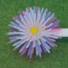 3D Yazıcı ile Yapılmış Şekil Değiştirebilen Nesneler!