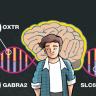 Yapılan Son Çalışmalar Genlerimizin Beslenme Biçimimizi Etkilediğini Ortaya Koymakta!