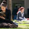 32 Üniversite İlk Defa Kayıtlarını İnternet Üzerinden Alacak