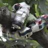 Doğanın İnsan Eliyle Taklidi: Robot Üretimine İlham Kaynağı Olan Hayvanlar!