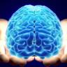 """Bilim İnsanları: """"Beynimiz Gördüklerimize Değil, Kendi Oluşturduğu Görüntülere İnanıyor"""""""