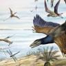 Dinozorlar Nasıl Oldu da Kuşlara Dönüştüler?