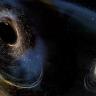 Yer Çekimi Dalgaları, Kara Delikler Hakkında Bilgi Sağlıyor!