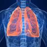 Sigarayı Bırakanların Ciğerleri Tam Anlamıyla Düzeliyor Mu?