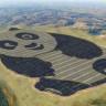 Çin, 250 Dönümlük Panda Görünümünde Güneş Enerjisi Santrali Kurdu!