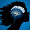 Beynimiz, Hangi Yaşta Hangi Yeteneklere Kavuşuyor?