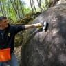 Bosna'da Bulunan 1500 Yıllık Dev Taş Küre Yeni Bir Kayıp Uygarlığı Ortaya Çıkarabilir