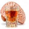 Çocuklukta Yaşanan Beyin Travmaları Alkol Bağımlılığı Riskini Arttırabiliyor