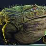 Yiyecek Dinozor ve Timsah Bulamayınca Soyu Tükenen Kurbağa Türüyle Tanışın