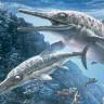"""Soyu Tükenmiş Vahşi Deniz Canlısı """"İhtiyozor""""a Ait Fosil Keşfedildi!"""