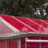 Elektrik Üretirken Ürün De Yetiştiren Güneş Enerjisi Seraları Küresel Isınmayı Yavaşlatabilirler