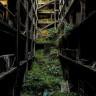 Japonya'nın, Kıyamet Sonrası Dünya'yı Andıran Terk Edilmiş Bölgeleri