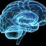 ABD Ordusu, Duygudurum Değişikliklerini Kontrol Etmek İçin Beyin İmplantları Geliştiriyor