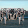 3600 Kilo Ağırlığında ve 4.5 Metre Boyunda Devasa Robot: Protez