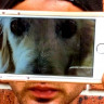 Akıllı Telefonunuzla Profesyonel Fotoğraflar Çekmeniz İçin 10 Küçük İpucu