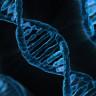 200 Yıl Önce Ölen Bir Adamın DNA'sı Yeniden Oluşturuldu!