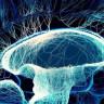 İnsani Bilincin Düzensizliği İfade Eden Entropi İle İlişkisi