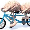 En İyi Arkadaşların Benzer Beyin Yapısına Sahip Olduğu Ortaya Çıktı