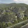 Kirli Hava Solumaktan Ciğeri Solan Çin'e İlaç Gibi Gelecek Proje: Orman Şehri