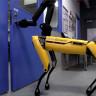 Boston Dynamics'in Kibar Robotu, Arkadaşı Geçsin Diye Kapıyı Açıyor (Video)