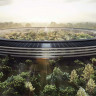 Apple CEO'su Tim Cook, Hissedarlara Merkez Binasını Gezdirmedi!