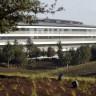 Apple Park'ın Cam Duvarları, Çalışanlar İçin Risk Taşıyor