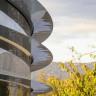 Apple Çalışanları, Apple Park'taki Camlara Çarparak Kendilerini Sakatlıyorlar!