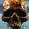 2011'de İsveç'te Bulunan, 8 Bin Yıllık İnsan Kafatasları Hakkındaki Bulgular Paylaşıldı