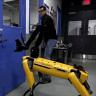 Boston Dynamics Robotunun Acımasız Mühendisiyle Verdiği Mücadele (Video)