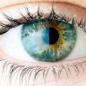 Gözlükleri Atma Vakti: Kornea'yı Onaracak Yeni Yöntem Geliyor