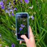 Doğayı Keşfetmek İsteyenlere Shazam Benzeri Yeni Uygulama: iNaturalist