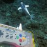Deniz Yaşamını İncelemek İçin Robot Balık Geliştirildi