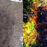 Kanada'nın Pasifik Kıyısından 13.000 Yıllık İnsan Ayak İzleri Bulundu