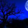 Bu Yılın Son Mavi Ay'ı Bu Gece Yükselecek