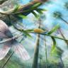 Jurassic Döneme Ait 200 Milyon Yıllık Kelebeğin Rengi Belli Oldu