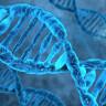 İnsan Genetiği, Kan Bozukluğu Tedavisi Sebebiyle İlk Kez Değiştirilecek