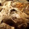 Arkeologlar Mısır'da Roma İmparatoru Marcus Aurelius'un Büstünü Buldu